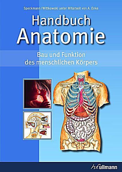 Speckmann / Wittkowski: Handbuch Anatomie