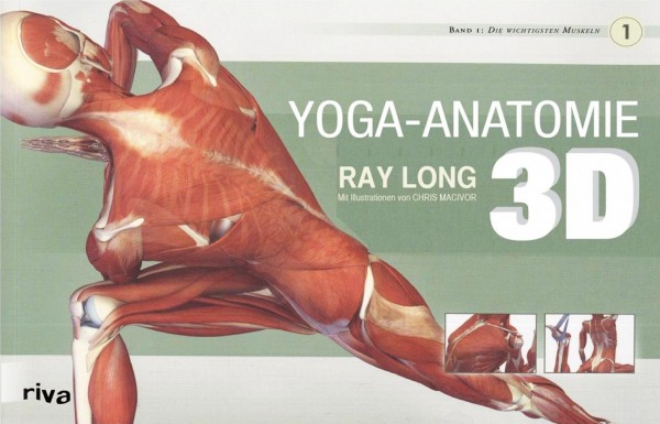Long: Yoga-Anatomie 3 D