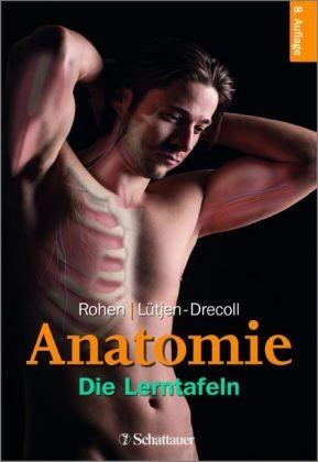 Anatomie des Menschen, Die Lerntafeln